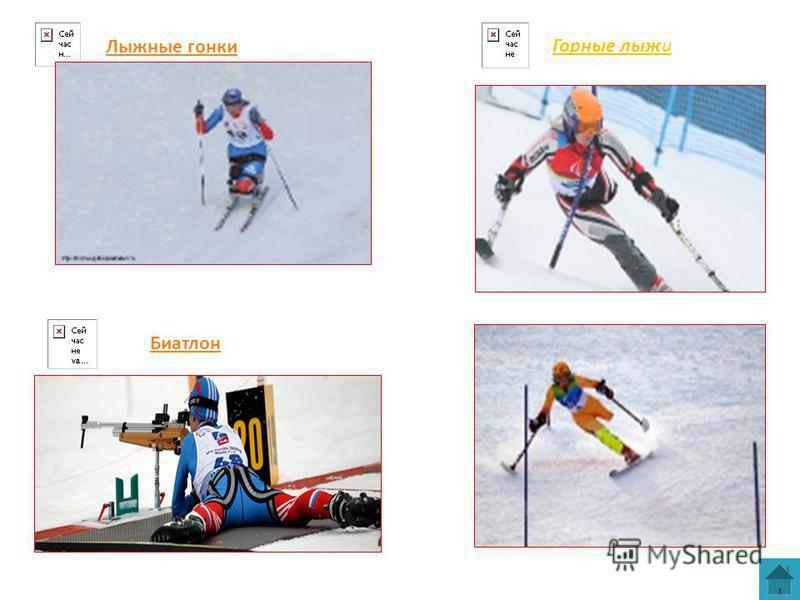 Лыжные гонки Биатлон Горные лыжи