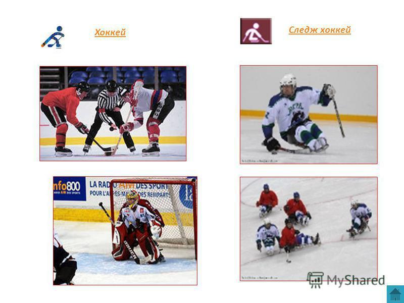 Следж хоккей Хоккей