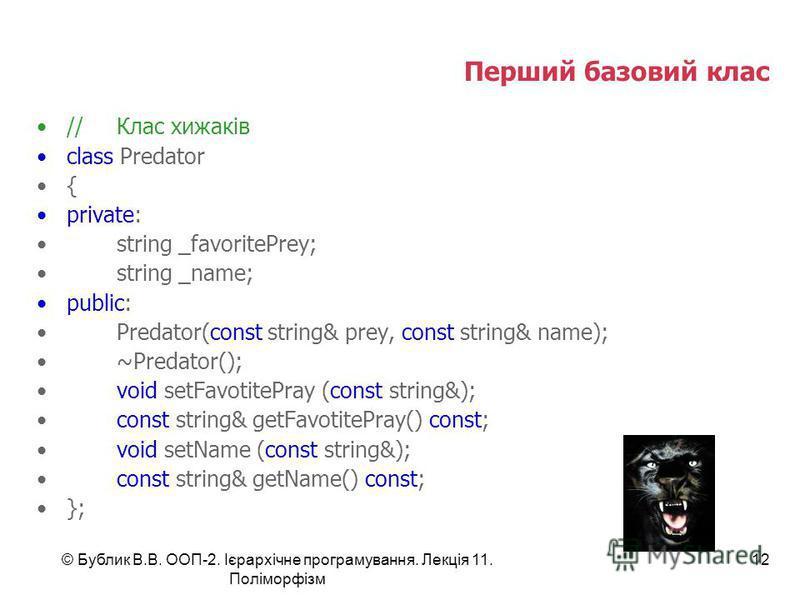 © Бублик В.В. ООП-2. Ієрархічне програмування. Лекція 11. Поліморфізм 12 Перший базовий клас //Клас хижаків class Predator { private: string _favoritePrey; string _name; public: Predator(const string& prey, const string& name); ~Predator(); void setF