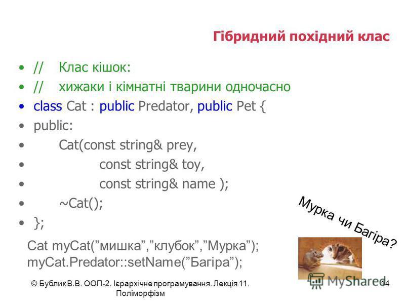 © Бублик В.В. ООП-2. Ієрархічне програмування. Лекція 11. Поліморфізм 14 Гібридний похідний клас //Клас кішок: //хижаки і кімнатні тварини одночасно class Cat : public Predator, public Pet { public: Cat(const string& prey, const string& toy, const st
