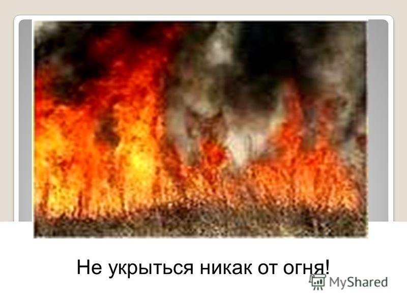 Не укрыться никак от огня!