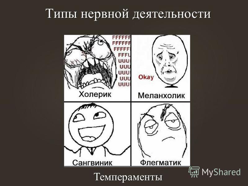 Типы нервной деятельности Темпераменты Типы нервной деятельности Темпераменты