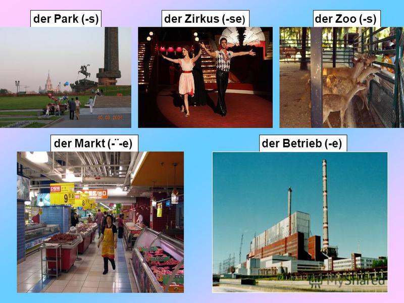 der Park (-s)der Markt (-¨-e)der Betrieb (-e)der Zirkus (-se ) der Zoo (-s)