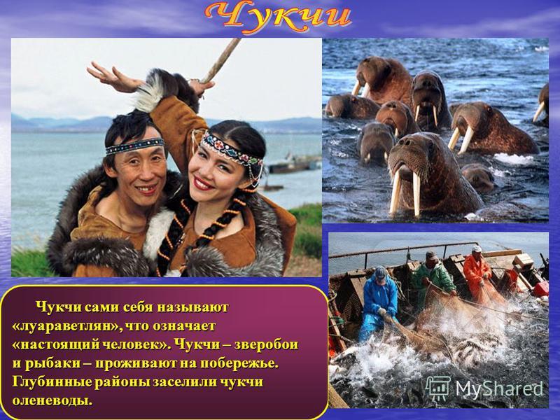 Чукчи сами себя называют Чукчи сами себя называют «луараветлян», что означает «настоящий человек». Чукчи – зверобои и рыбаки – проживают на побережье. Глубинные районы заселили чукчи оленеводы.