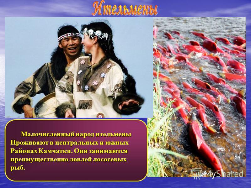 Малочисленный народ ительмены Малочисленный народ ительмены Проживают в центральных и южных Районах Камчатки. Они занимаются преимущественно ловлей лососевых рыб.