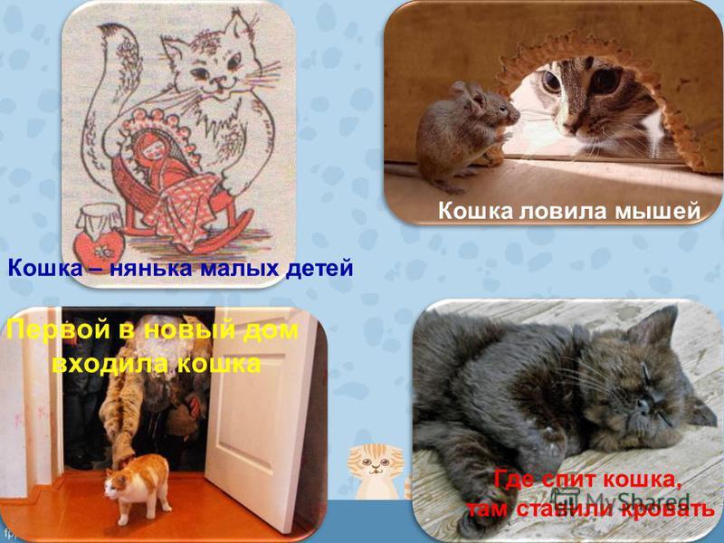 Кошка ловила мышей Кошка – нянька малых детей Первой в новый дом входила кошка Где спит кошка, там ставили кровать