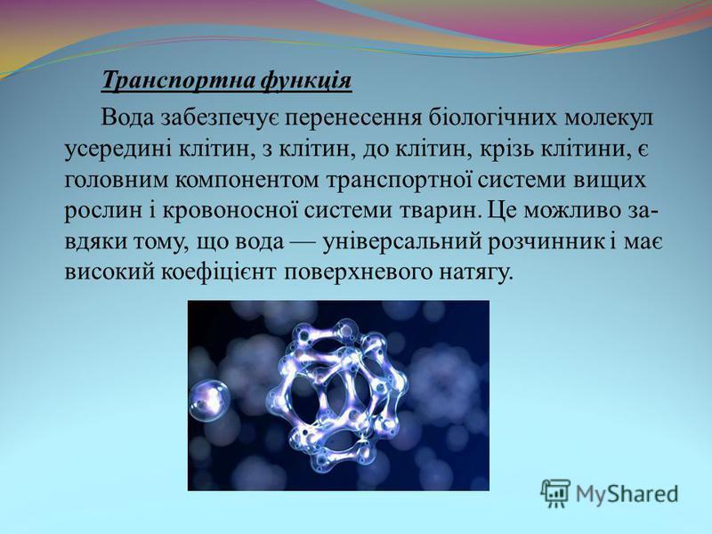 Транспортна функція Вода забезпечує перенесення біологічних молекул усередині клітин, з клітин, до клітин, крізь клітини, є головним компонентом транспортної системи вищих рослин і кровоносної системи тварин. Це можливо за- вдяки тому, що вода універ