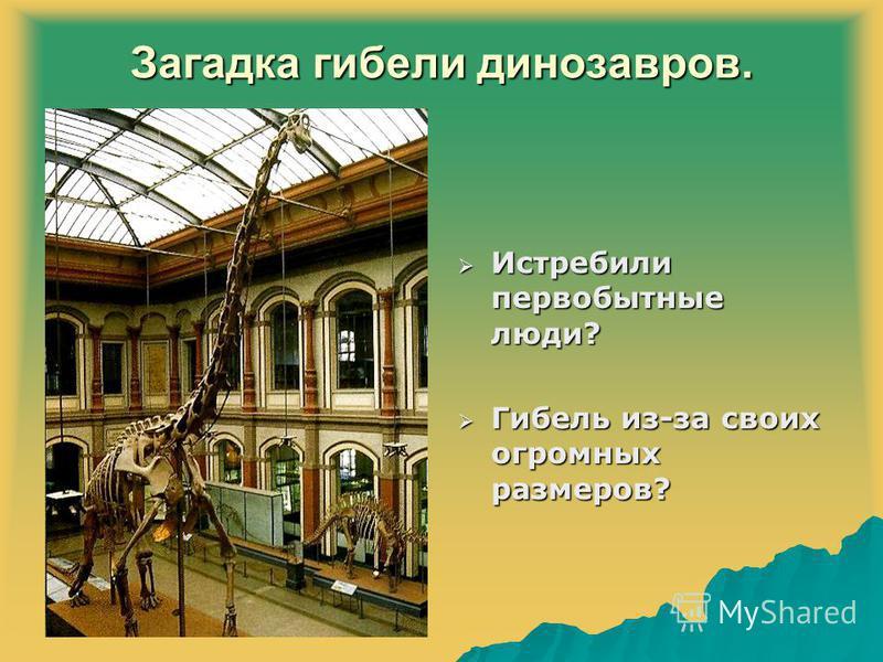 Загадка гибели динозавров. Истребили первобытные люди? Истребили первобытные люди? Гибель из-за своих огромных размеров? Гибель из-за своих огромных размеров?