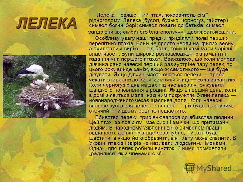 ЛЕЛЕКА Лелека – священний птах, покровитель сімї рідногодому. Лелека (бусол, бузько, чорногуз, гайстер) символ богині Зорі; символ поваги до батьків; символ мандрівників; сімейного благополуччя, щастя;батьківщини. Особливу увагу наші предки приділяли