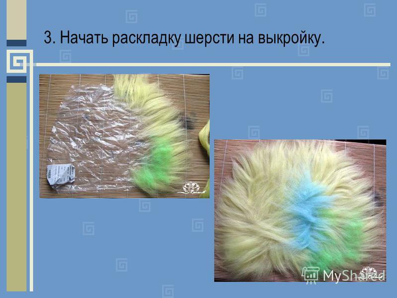 3. Начать раскладку шерсти на выкройку.