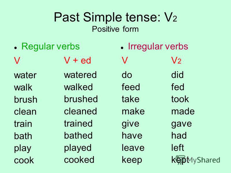 Past Simple tense: V 2 Positive form Regular verbs V water walk brush clean train bath play cook Irregular verbs V do feed take make give have leave keep V + ed watered walked brushed cleaned trained bathed played cooked V 2 did fed took made gave ha