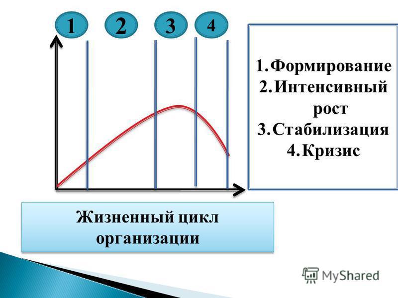 1 2 3 4 Жизненный цикл организации 1. Формирование 2. Интенсивный рост 3. Стабилизация 4.Кризис