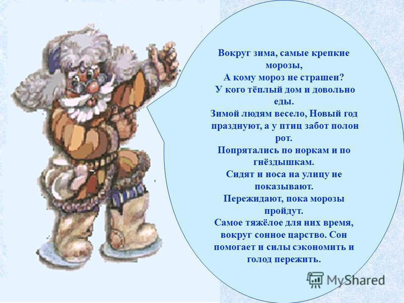 Вокруг зима, самые крепкие морозы, А кому мороз не страшен? У кого тёплый дом и довольно еды. Зимой людям весело, Новый год празднуют, а у птиц забот полон рот. Попрятались по норкам и по гнёздышкам. Сидят и носа на улицу не показывают. Пережидают, п