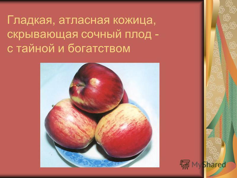 Золотистый нежный цвет, румянец яблочка – с красотой, здоровьем и молодостью