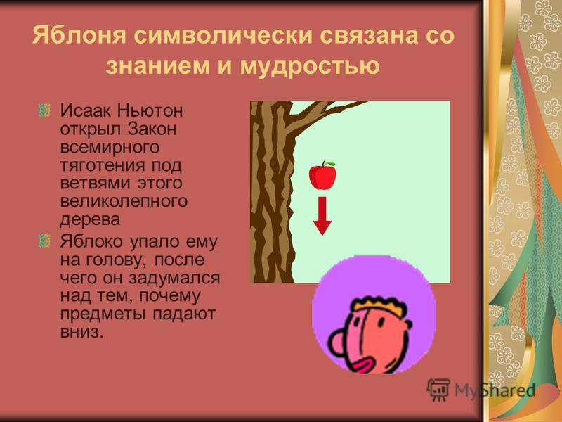 Яблоневый цвет символизирует женскую красоту. Цветок яблони часто называют цветком любви из-за его нежно-розового цвета.