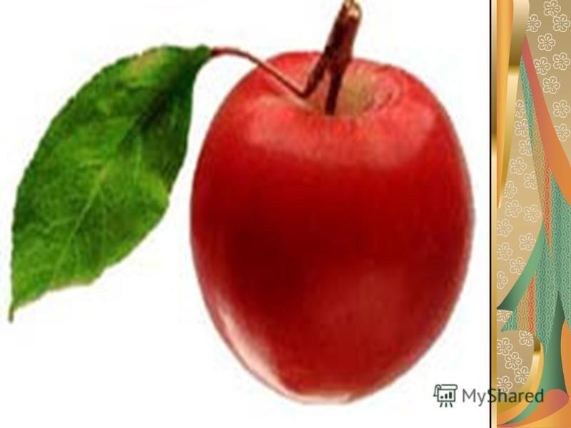 Именно на это дерево чаще всего прилетает жар-птица, чтобы поклевать золотые яблочки.