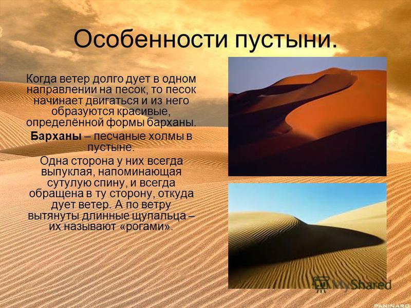 Особенности пустыни. Когда ветер долго дует в одном направлении на песок, то песок начинает двигаться и из него образуются красивые, определённой формы барханы. Барханы – песчаные холмы в пустыне. Одна сторона у них всегда выпуклая, напоминающая суту