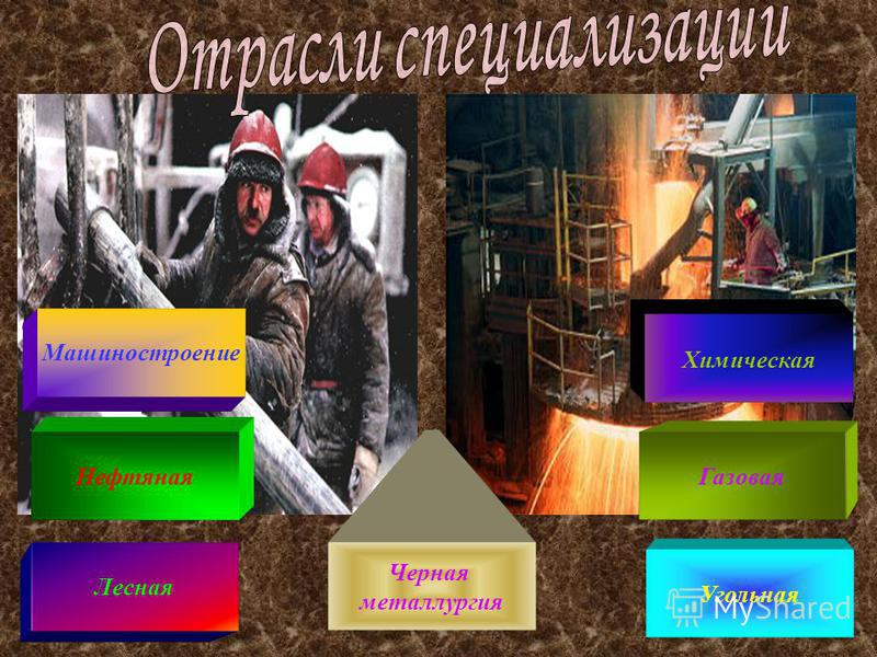 Нефтяная Машиностроение Угольная Химическая Черная металлургия Газовая Лесная