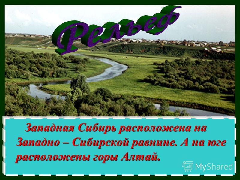 Западная Сибирь расположена на Западно – Сибирской равнине. А на юге расположены горы Алтай. Западная Сибирь расположена на Западно – Сибирской равнине. А на юге расположены горы Алтай.