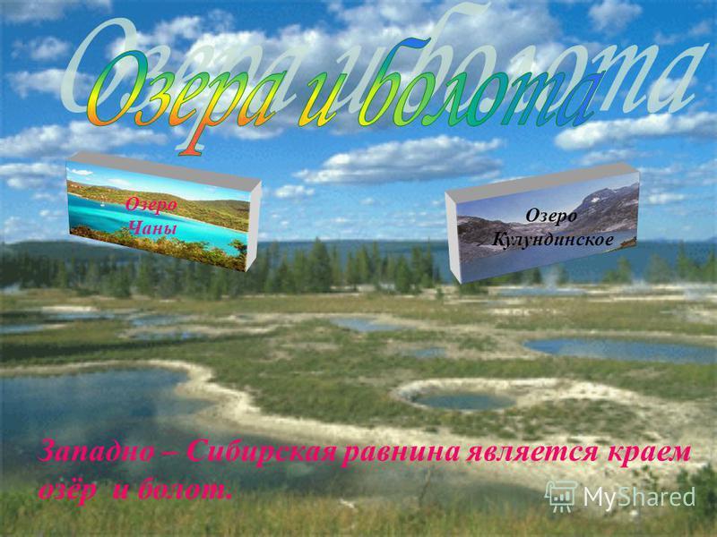 Озеро Чаны Озеро Кулундинское Западно – Сибирская равнина является краем озёр и болот.