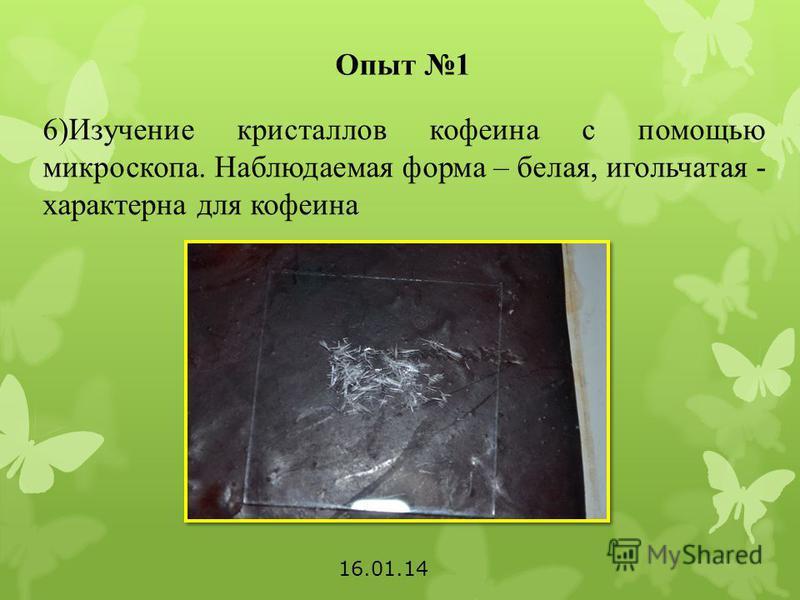 Опыт 1 6)Изучение кристаллов кофеина с помощью микроскопа. Наблюдаемая форма – белая, игольчатая - характерна для кофеина 16.01.14