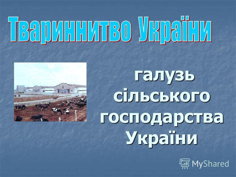 галузь сільського господарства України галузь сільського господарства України