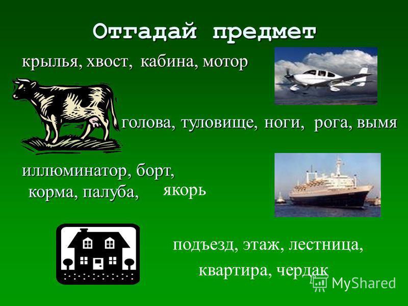 Отгадай предмет крылья, хвост, голова, туловище, ноги, иллюминатор, борт, подъезд, этаж, лестницца, кабина, мотор рога, вымя корма, палуба, якорь квартира, чердак