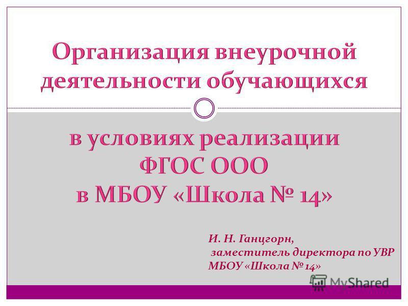 И. Н. Ганцгорн, заместитель директора по УВР МБОУ «Школа 14»