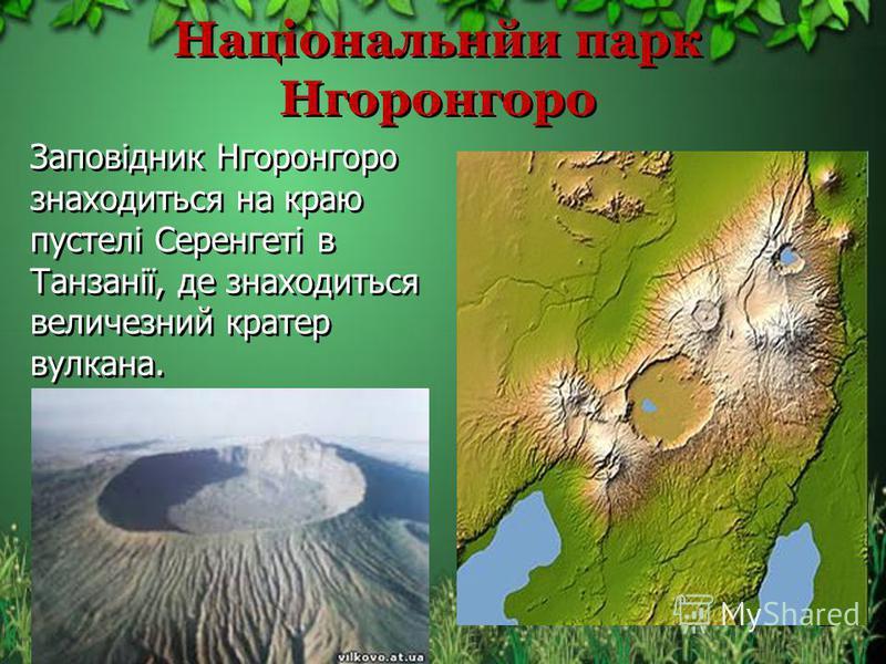 Національнйи парк Нгоронгоро Заповідник Нгоронгоро знаходиться на краю пустелі Серенгеті в Танзанії, де знаходиться величезний кратер вулкана. 22