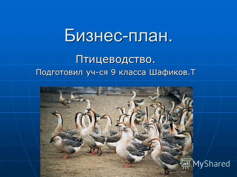 Бизнес-план. Птицеводство. Подготовил уч-ся 9 класса Шафиков.Т