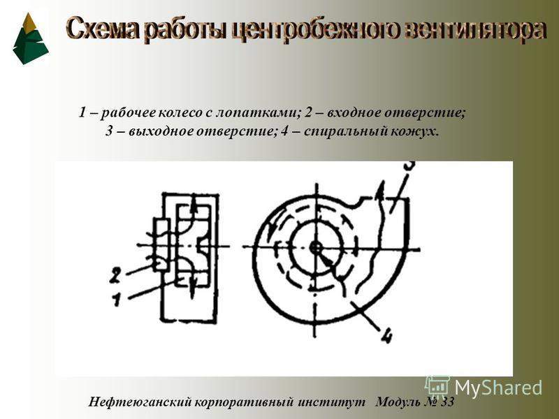 Нефтеюганский корпоративный институт Модуль 33 1 – рабочее колесо с лопатками; 2 – входное отверстие; 3 – выходное отверстие; 4 – спиральный кожух.