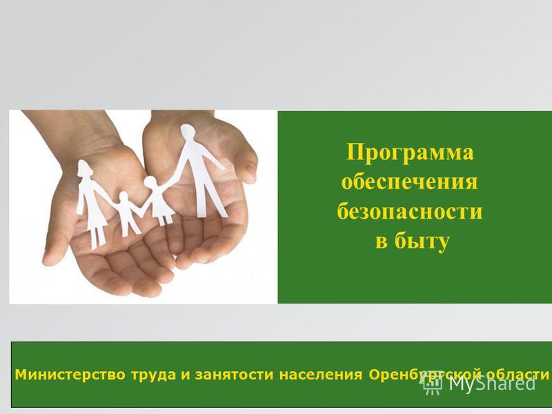 Министерство труда и занятости населения Оренбургской области Программа обеспечения безопасности в быту