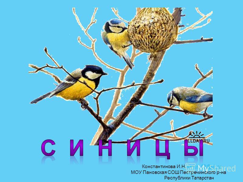 Константинова И.Н. kinkin.63@bk.rukinkin.63@bk.ru МОУ Пановская СОШ Пестречинского р-на Республики Татарстан