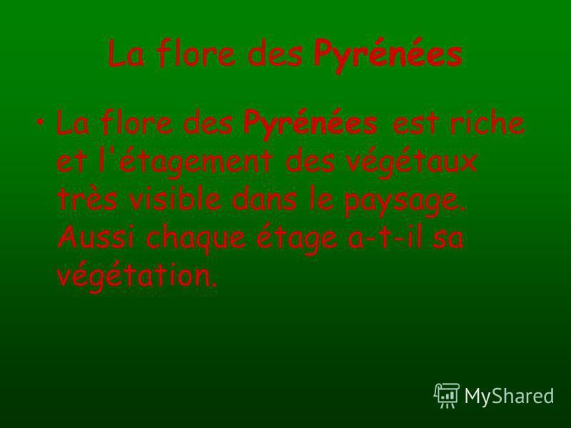 La flore des Pyrénées La flore des Pyrénées est riche et l'étagement des végétaux très visible dans le paysage. Aussi chaque étage a-t-il sa végétation.