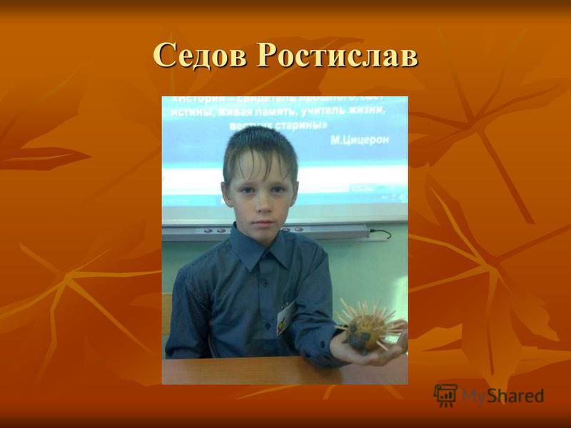 Седов Ростислав
