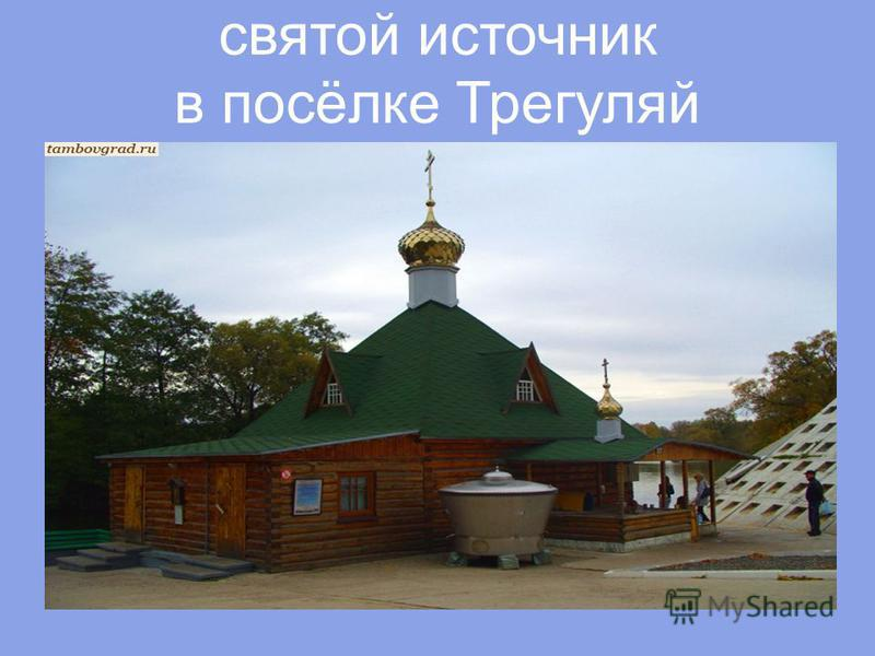святой источник в посёлке Трегуляй