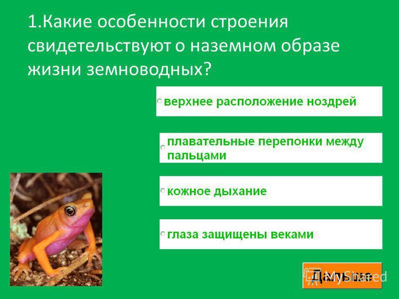 1. Какие особенности строения свидетельствуют о наземном образе жизни земноводных?