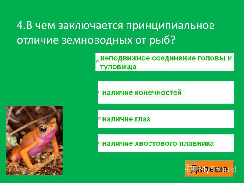 4. В чем заключается принципиальное отличие земноводных от рыб?