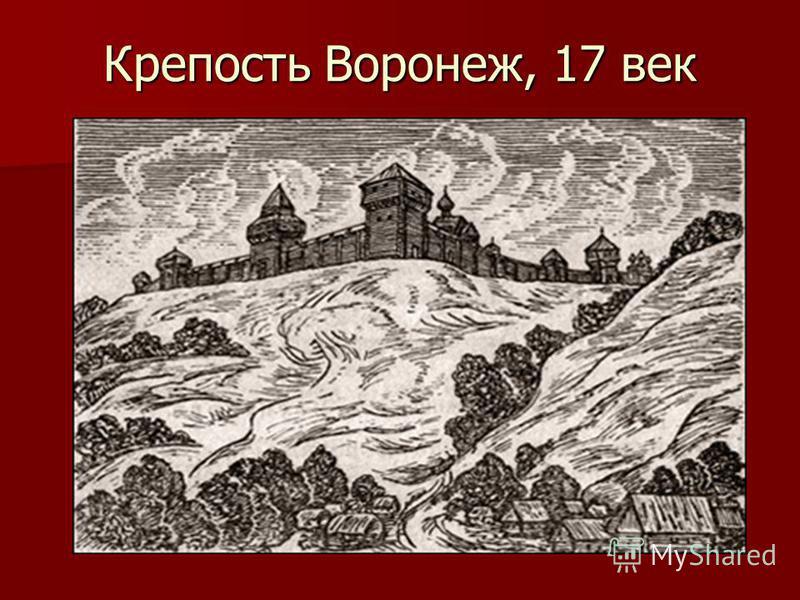 Воронеж –любовь и родина моя!