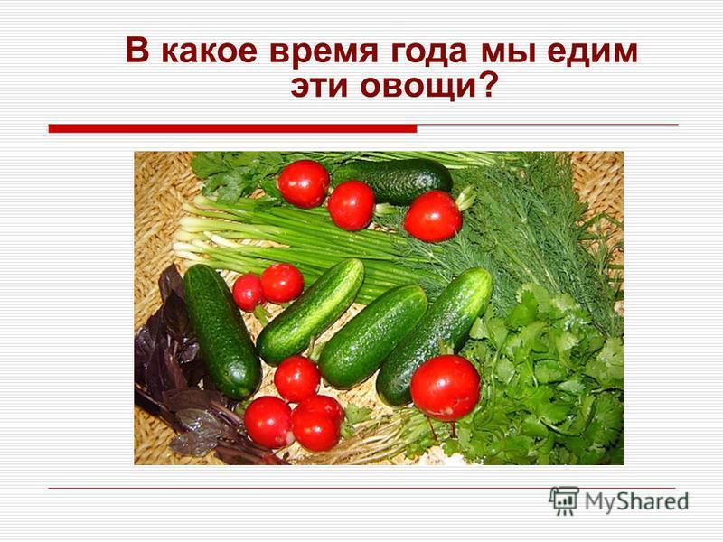 В какое время года мы едим эти овощи?