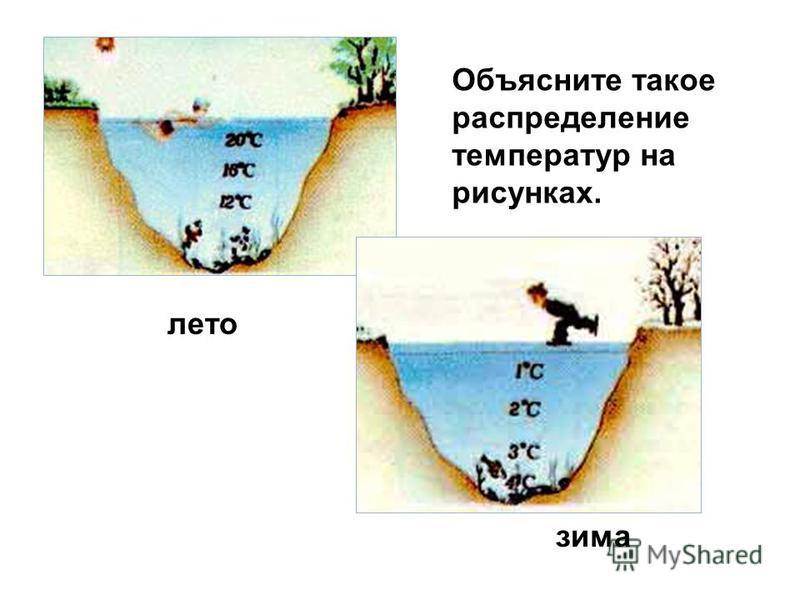 лето зима Объясните такое распределение температур на рисунках.