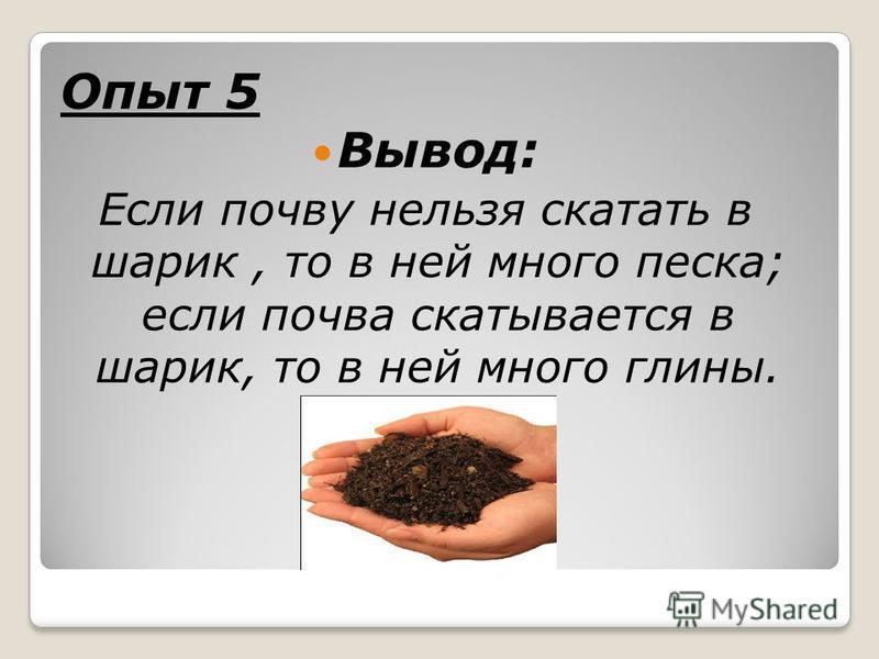 Опыт 5 Вывод: Если почву нельзя скатать в шарик, то в ней много песка; если почва скатывается в шарик, то в ней много глины.