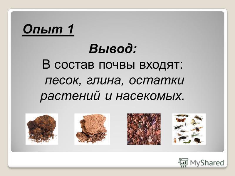 Опыт 1 Вывод: В состав почвы входят: песок, глина, остатки растений и насекомых.