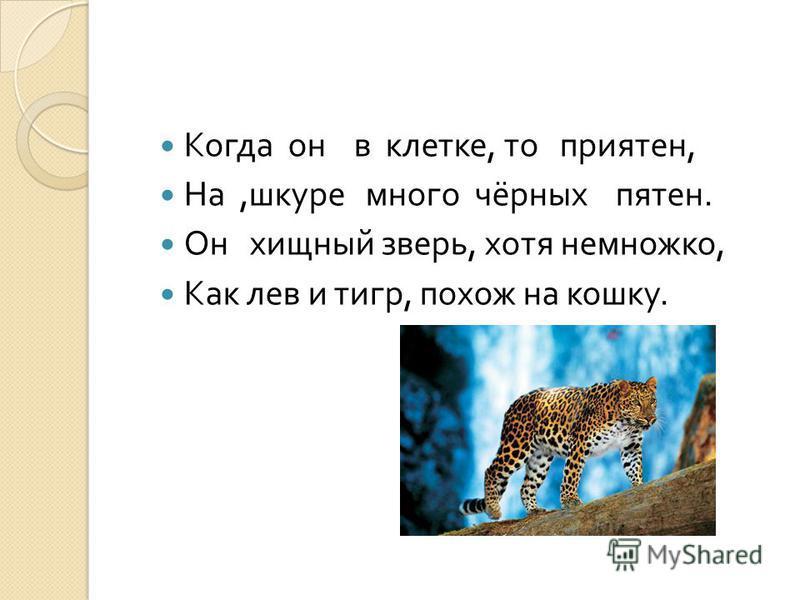 Когда он в клетке, то приятен, На, шкуре много чёрных пятен. Он хищный зверь, хотя немножко, Как лев и тигр, похож на кошку.