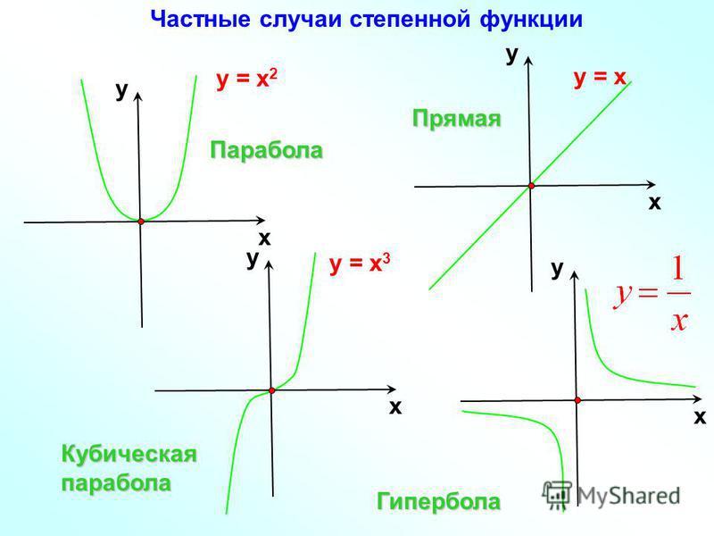 у = х 2 х у у = х 3 х у х у Парабола Кубическая парабола Гипербола у = х х у Прямая Частные случаи степенной функции