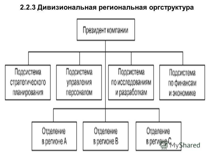 2.2.3 Дивизиональная региональная оргструктура