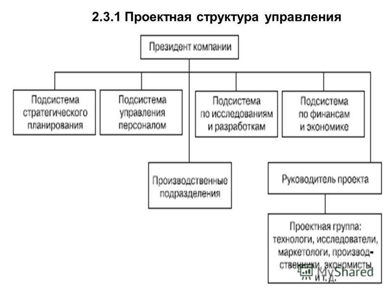 2.3.1 Проектная структура управления