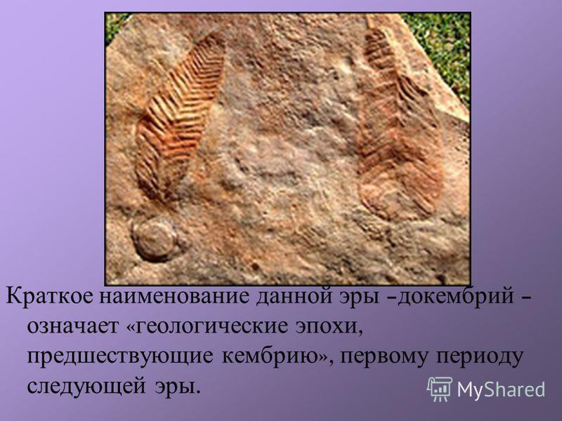 Краткое наименование данной эры – докембрий – означает « геологические эпохи, предшествующие кембрию », первому периоду следующей эры.