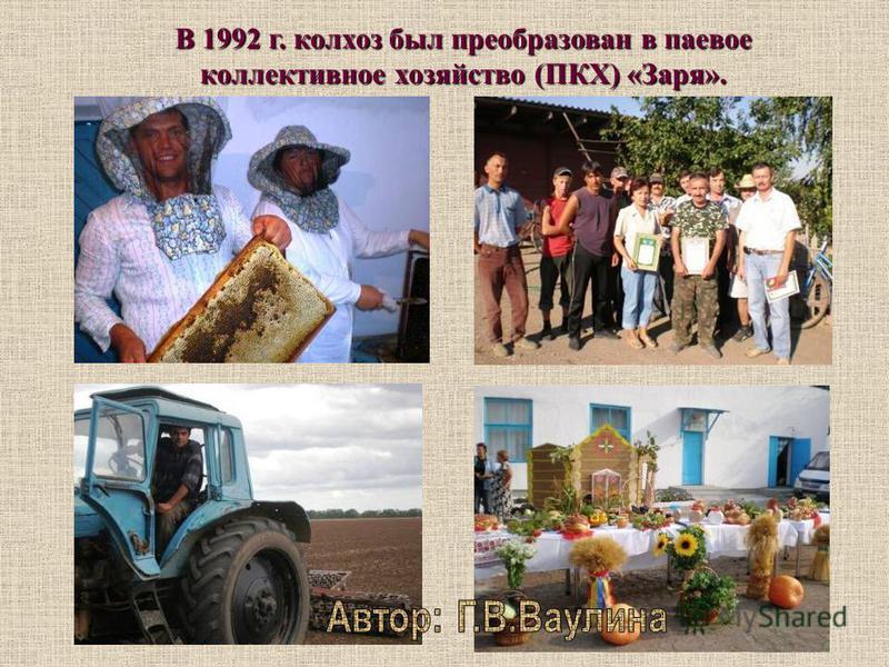 Колхоз «Путь Ильича» имел 309 дворов, 498 трудоспособных членов. Было закреплено за хозяйством 4250 га. Земель, в том числе 2823 га пашни. Хозяйство имело зерново-виноградческое направление с развитым животноводством. Были построены в 60-е годы консе