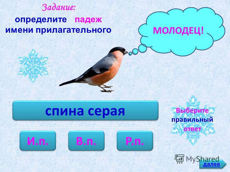 у молодых птиц И.п. В.п. Р.п. Задание: определите падеж имени прилагательного ПОДУМАЙ!МОЛОДЕЦ! далее Выберите правильный ответ